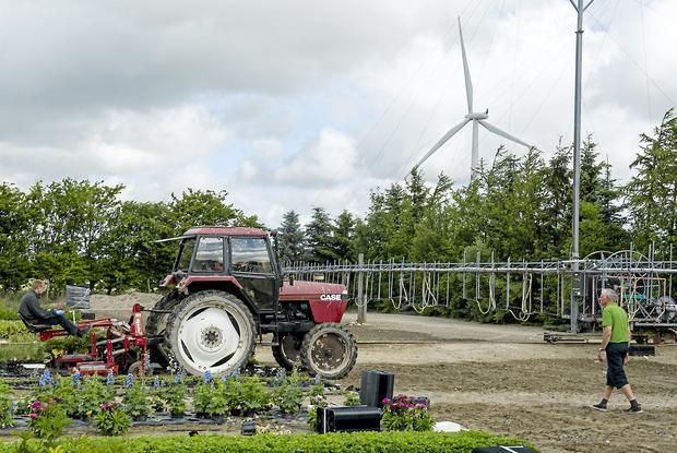 Wind turbine infrasound affects OVULATION Denmark – Plant World Nursery and Garden Center