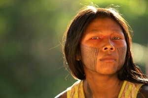 Kayapo Trust Fund Created
