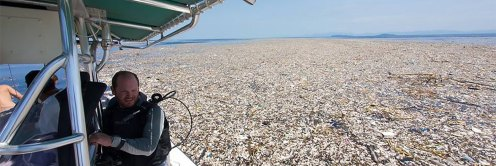 Caribbean plastic sea