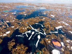 Sea of plastic near island